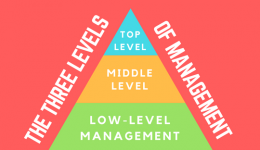 The Three Levels of Management
